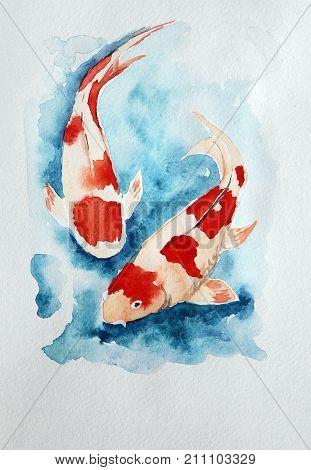Two carp koi in water. Watercolor painting