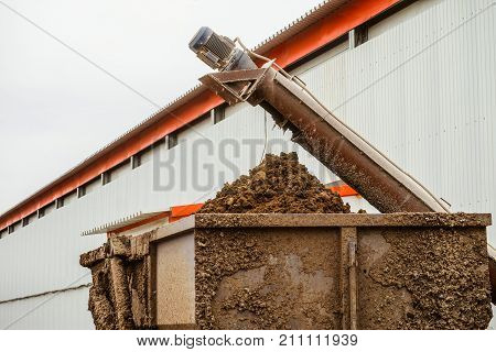 Removal of poultry manure from a poultry house. Agro industry aviculture complex.