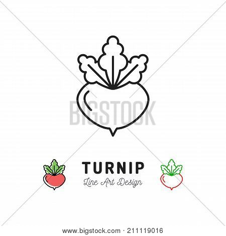 Turnip icon Vegetables logo. Thin line art design, Vector outline illustration