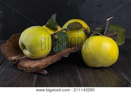 Quince on dark wooden background. Autumn fruits.