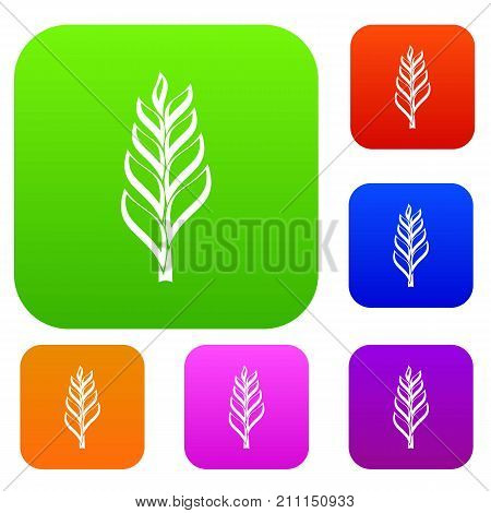 One spica set icon color in flat style isolated on white. Collection sings vector illustration