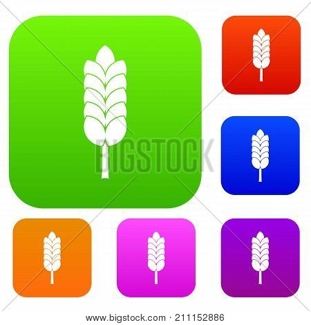 Big spica set icon color in flat style isolated on white. Collection sings vector illustration