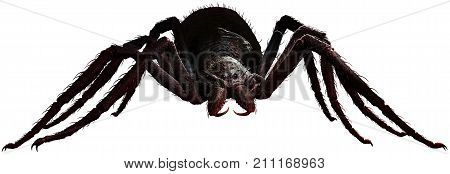 Giant spider waiting to pounce 3D illustration