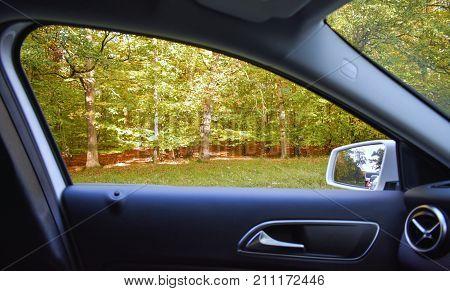 POV Through Car Window of Autumn Forest Outside