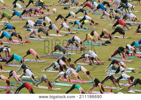 ATLANTA, GA - JULY 2017:  Dozens of people do the downward-facing dog pose as they take part in a free group yoga class at the Old Fourth Ward Park in Atlanta GA on July 2 2017.