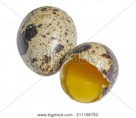 two brown dappled quail eggs with a opened one in white back