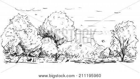 Sketchy Drawing Of Nature Park Landscape