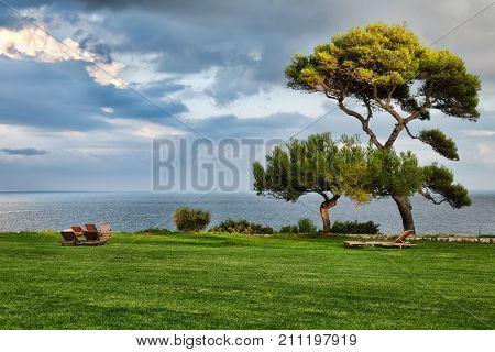 Lawn with deck chairs and views of sea