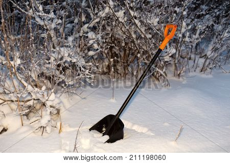 Shovel in the snow in the night forest.
