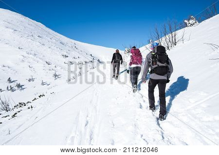 Group walking on snowy mountains, Young people walks mountains, Snowy European mountains with group of athletes, People with backpacks walk through mountains, Young tourists in winter mountains