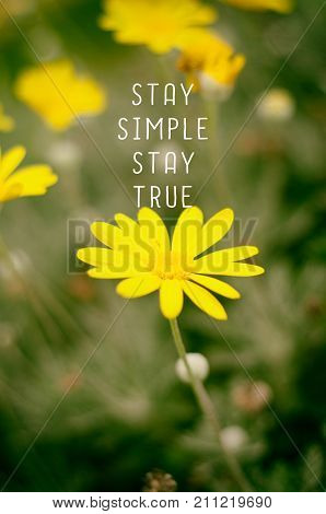 Life inspirational quotes - Stay simple stay true. Blurry retro background.