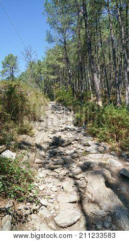 Pilgrim trail between Ponte de Lima and Valenca on the Camino de Santiago, Portugal