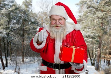 Santa Claus gesturing thumb up outdoors. Senior Santa Claus holding red gift box and giving thumb up on winter nature background. Kind Santa Claus carriyng gifts to children.