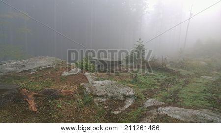 view of autumn southern Bohemia Czech Republic