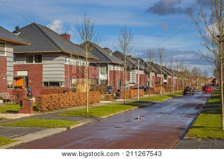 Dutch Family Houses In A Suburban Street