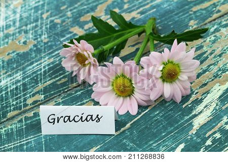 Gracias (which means thank you in Spanish) card with pink daisy flowers on rustic wooden surface