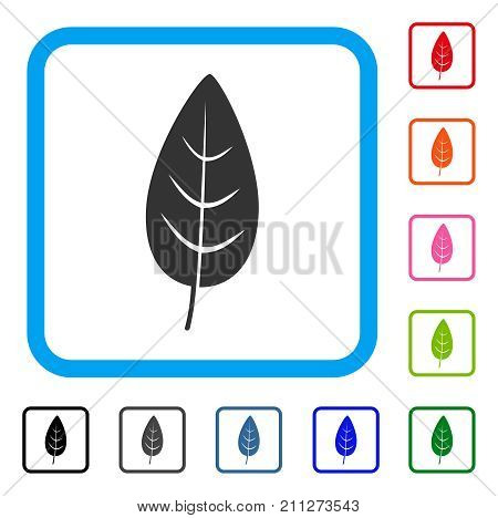 Flora Leaf icon. Flat gray iconic symbol inside a blue rounded frame. Black, gray, green, blue, red, orange color additional versions of Flora Leaf vector.