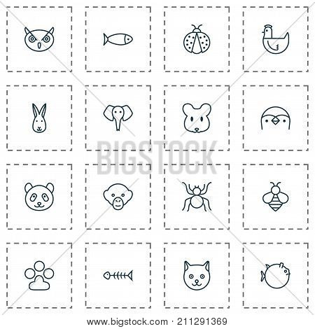 Nature Icons Set. Collection Of Bunny, Baboon, Rat And Other Elements