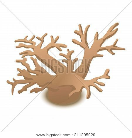 Deer horned coral icon. Cartoon illustration of deer horned coral vector icon for web
