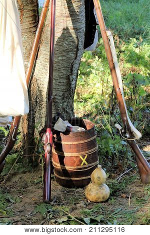Three flintlock muskets leaning against a tree at a Revolutionary War reenactment.