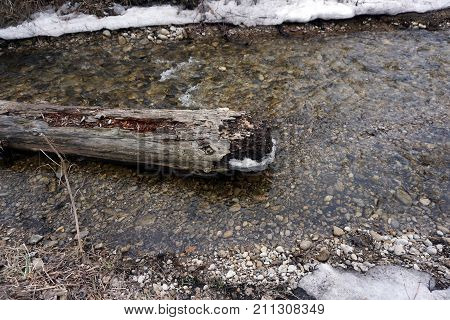 A fallen log lies in the middle of Tannery Creek, near Bay View, Michigan, during March.