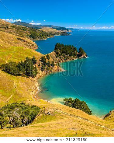 Blue Water At Marlborough Sounds, South Island, New Zealand