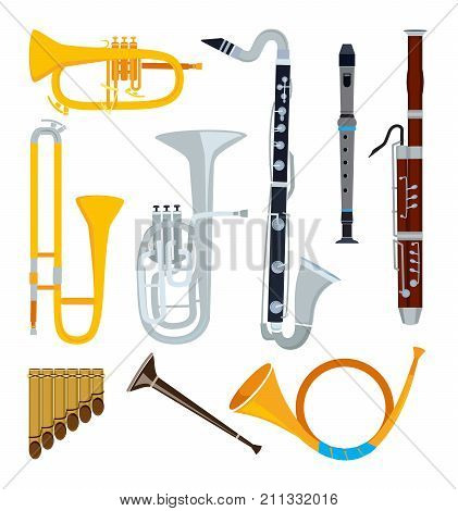 Isolated musical instruments in cartoon style. Musical saxophone and music classica instrument flute and sax, vector illustration