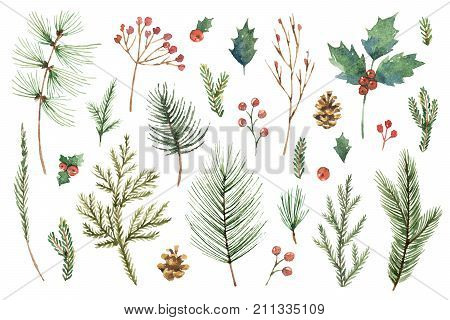 Watercolor Christmas set with evergreen coniferous tree branches, berries and leaves. Illustration for your holiday design isolated on a white background.
