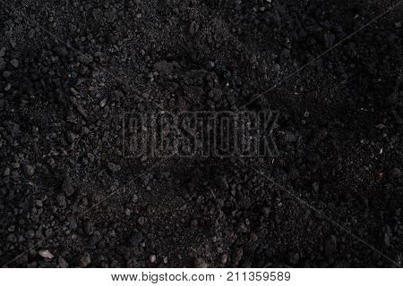 Soil Texture. Soil Palm, Cultivated Dirt, Earth, Ground, Brown Land Background. Organic Gardening, A