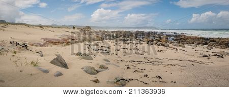 Panoramic view of the sandy seashore on the shipwreck hike in Cape Point Nature Reserve, South Africa