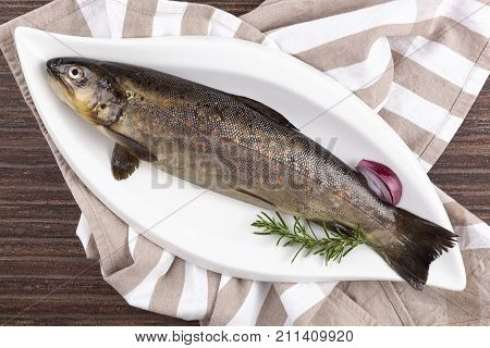 Fresh rainbow trout fish on white plate from above. Culinary seafood eating.