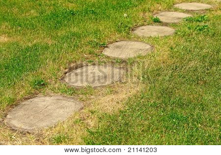 Footpath Of Wooden Stubs