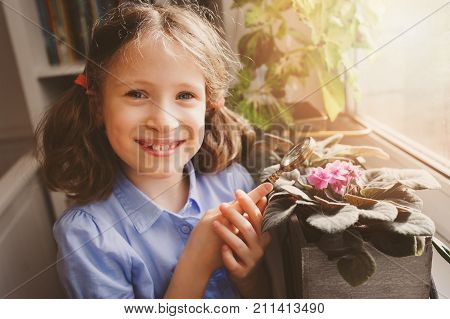 child girl learning to grow potted plants at home Kid exloring home flowers with loupe. Nature care and ecology concept