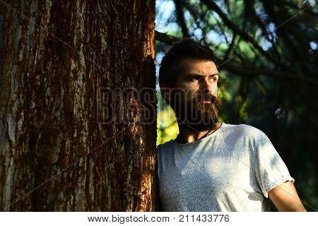 Macho With Beard Enjoys Sunny Weather. Warm Season And Masculinity