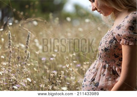 Meadow woman pregnant pregnant woman pregnant belly pregnant lady pregnant couple