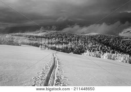 Winter landscape with lonely ski run on the mountain black and white