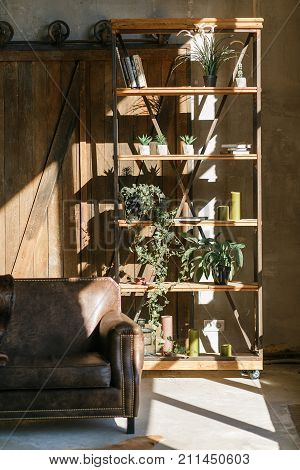 Loft interior with old wooden sliding door, leather sofa, iron rack and shelves full of succulents, flowers, books and decor objects. Indoor shot in sun beams.