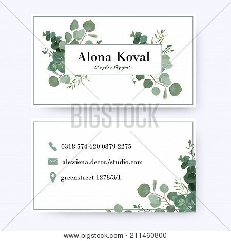 Floral business card design. Vintage rustic eucalyptus silver green greenery leaves frame pattern in modern style with frame. Complied with the standard size. Elegant delicate tender creative layout