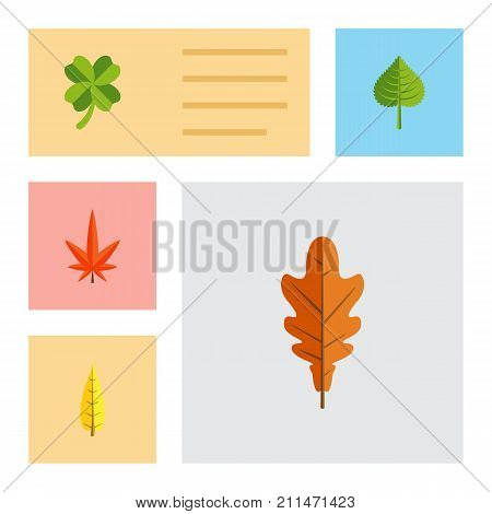 Flat Icon Foliage Set Of Maple, Hickory, Linden And Other Vector Objects