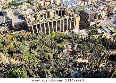 View Of Botanical Garden And Fontvieille Quarter In Monaco.