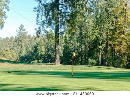 View of the Forest Around a Golf Course