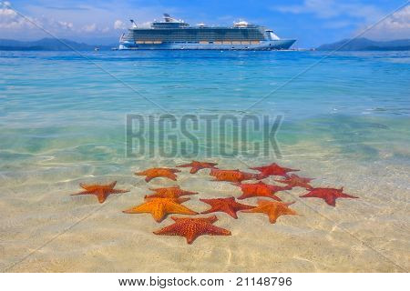 A cruiseship and a starfish