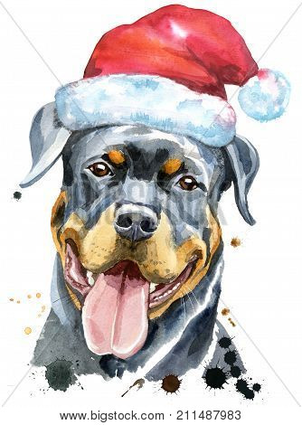 Cute Dog. Dog T-shirt graphics. watercolor rottweiler with Santa hat