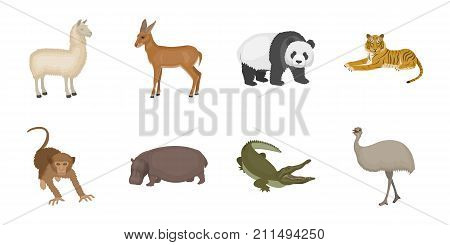 Different animals icons in set collection for design. Bird, predator and herbivore vector symbol stock  illustration.