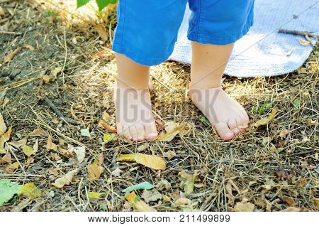 Two small baby legs in summer park