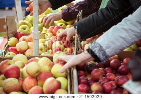 woman in the fruit market with apple in hand. fruits and vegetables. a lot of fruits. market. store. healthy food. natural. health. VEGETARIAN. diet