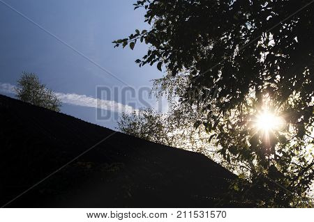 A blue sky with jet trail house top and sun shining through the tress contra light shotlow