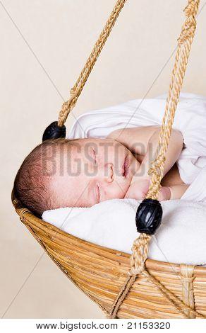 Newborn in the basket