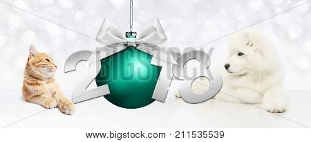 Dog and cat with christmas blue ball and 2018 text on white background