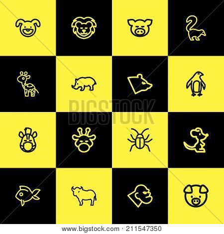 Set Of 16 Editable Zoology Outline Icons. Includes Symbols Such As Camelopard, Polar, Lion And More poster
